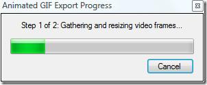 animated gif export
