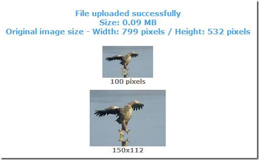 image resized