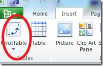 Pivot Table 2