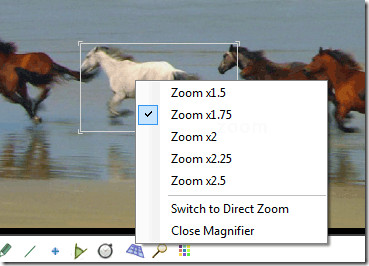 zoomfeatures
