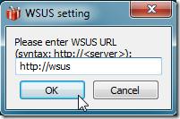 WSUS Server
