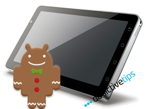 Viewsonic-G-Tablet-gingerbread