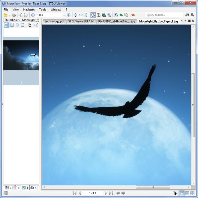 Moonlight_flyer_by_Tiger_I.jpg-STDU-Viewer.jpg