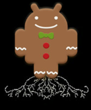 gingerbread-root