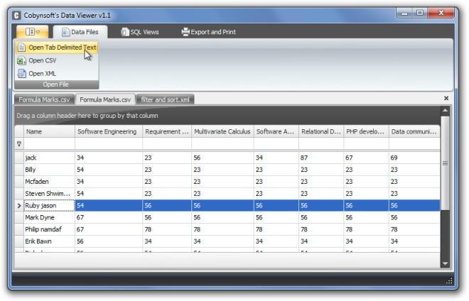 Cobynsoft's Data Viewer v1.1
