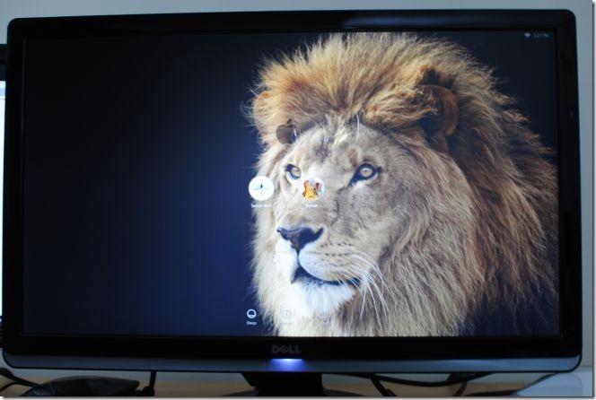 Lion Login Screen