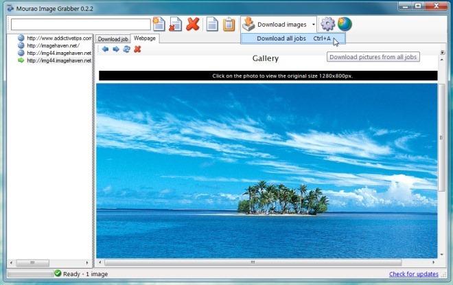 Mourao Image Grabber 0.2