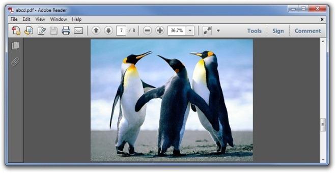 abcd.pdf-Adobe-Reader.jpg