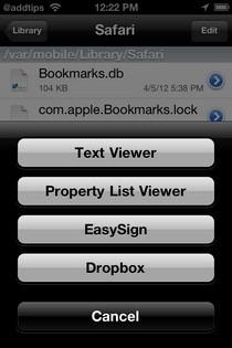 iFile Safari Search Engine Viewer