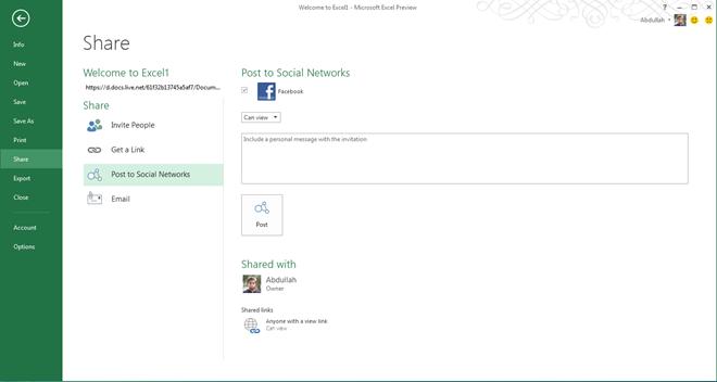 Excel 2013 Social Share