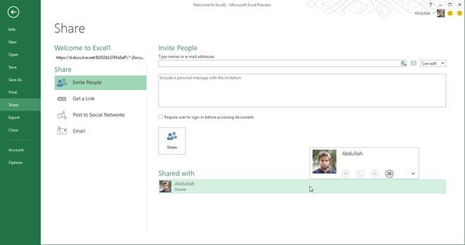 Excel 2013 User Management