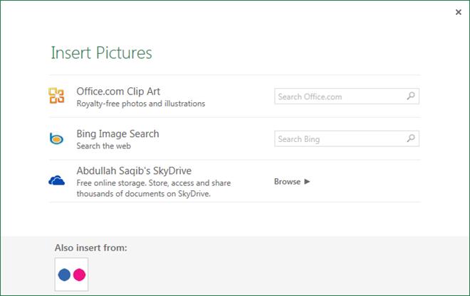 Insert Online Pictures Excel 2013