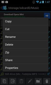 Exlorer  File Manager - Options