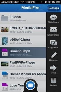 MediaFire iOS File Options