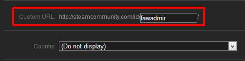 2012-12-29 12_39_18-Steam Community __ Edit Profile