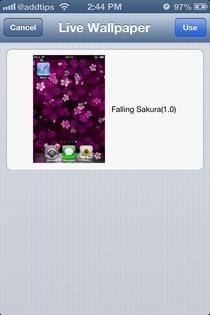 LiveWallpaper iOS Live