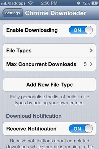 Chrome Downloader iOS Settings