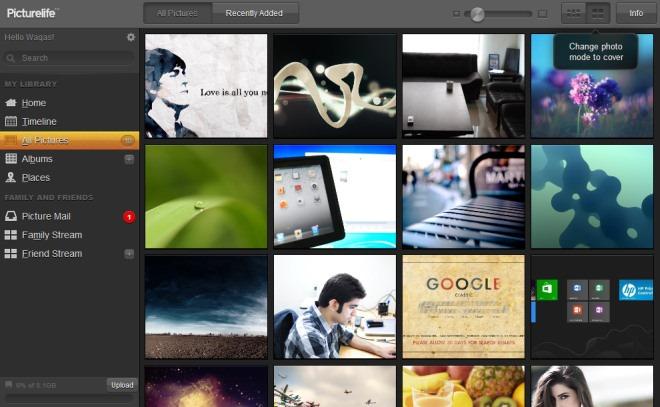 Picturelife_Web