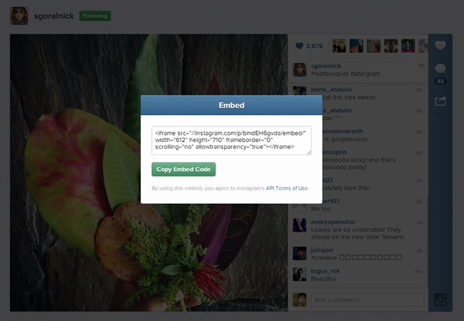 How-to-embed-Instagram-videos-and-photos-on-a-website-Step-5.jpg