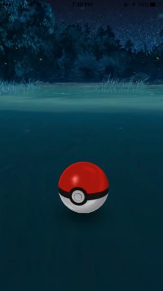 pokemon go caught