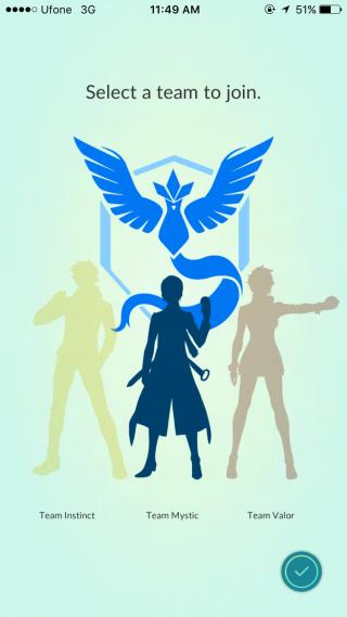 pokemon team selected