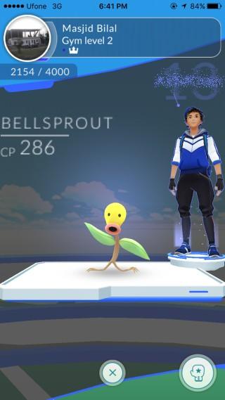 gym-battle