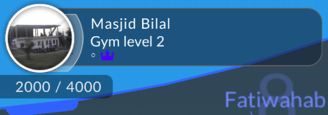 gym-leader