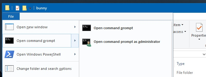 pin command prompt