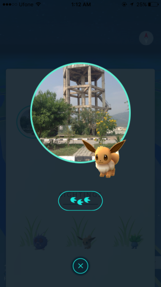 pokemon-nearby-pawprints