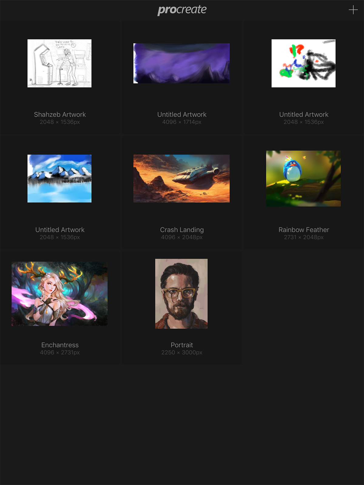 ProCreate Launch Screen