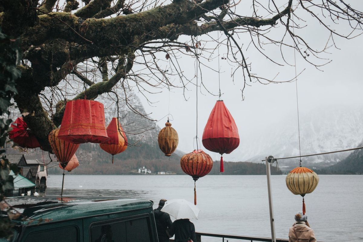Paper Lamps Hanging From A Tree