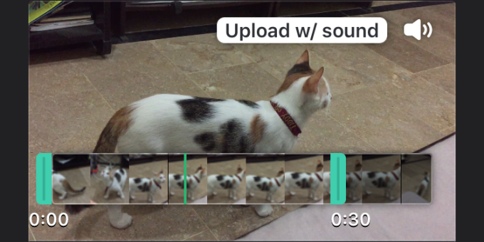 gif with sound
