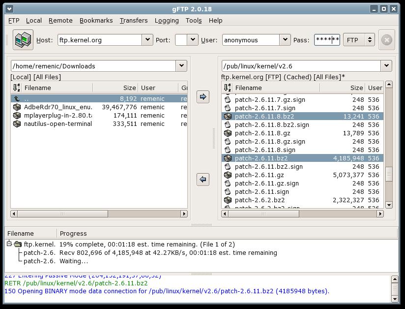 gFTP Screenshot