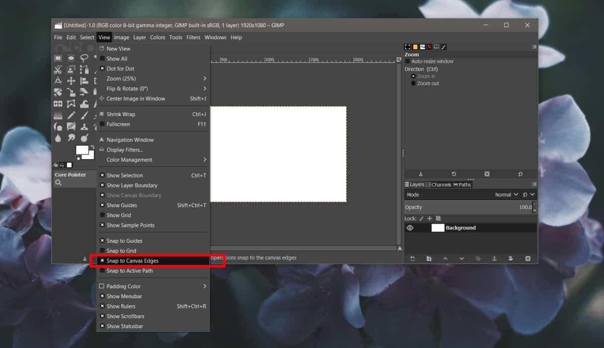 settings in GIMP