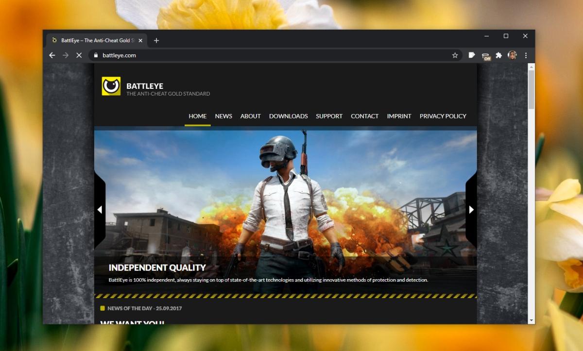 Battleye Anticheat software